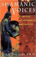 Survey of Visionary Narratives by Joan Halifax